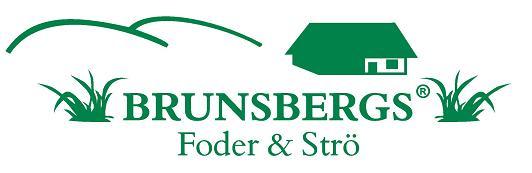 Brunsbergs